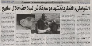 turtle nesting newspaper arabic